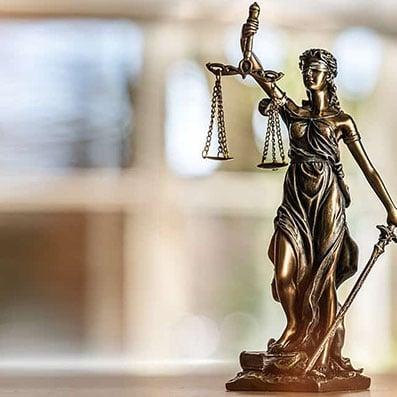 Human Rights Litigation